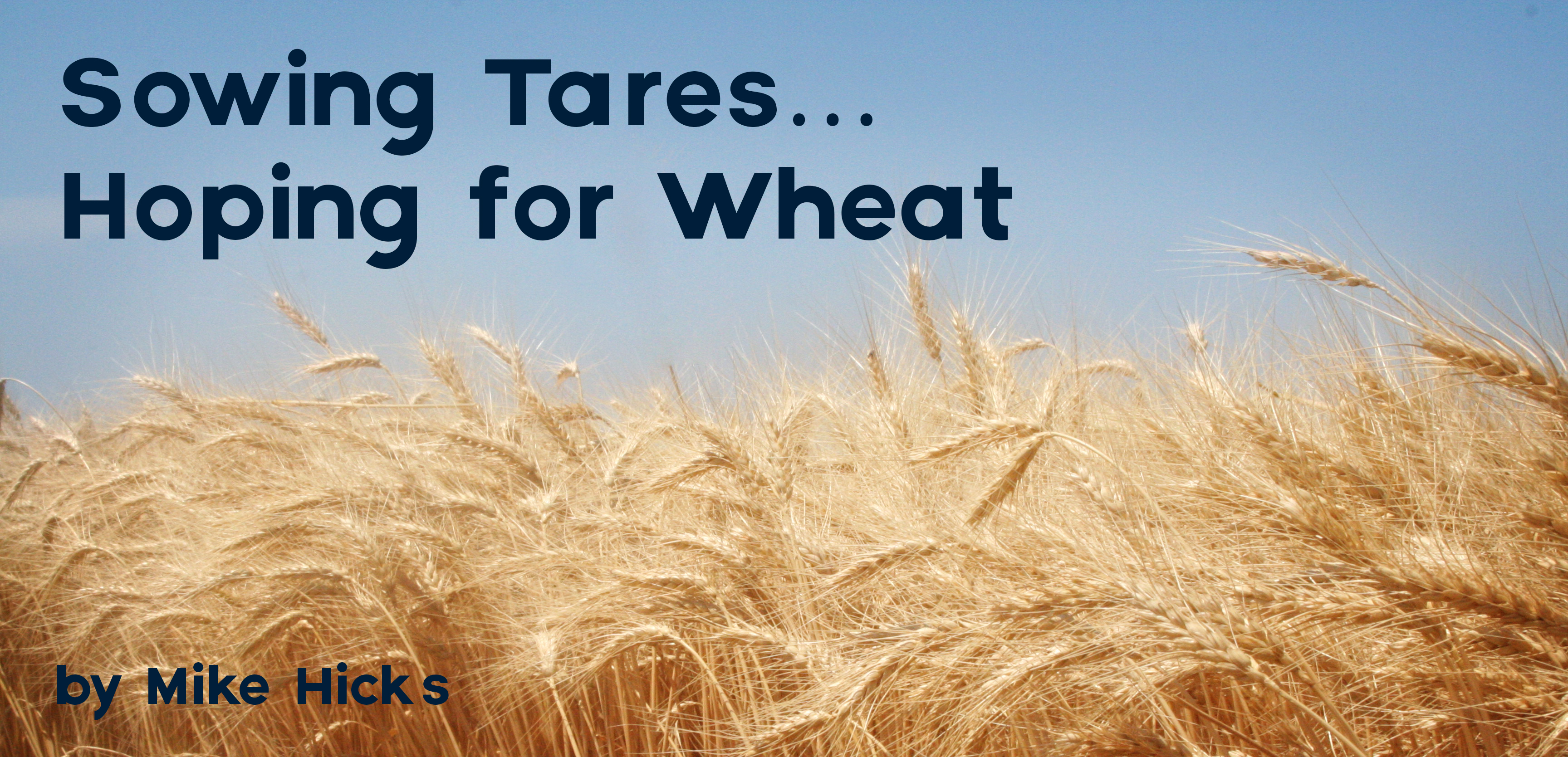 Sowing tareshoping for wheat ceai of heaven may be compared to a man who sowed good seed in his field but while his men were sleeping his enemy came and sowed tares among the wheat buycottarizona Choice Image
